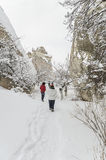 People walking on snow Stock Photography
