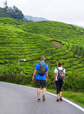 People walking on street in Cameron Highlands, Malaysia.  Royalty Free Stock Images