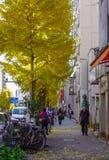 People walking on street in Tokyo, Japan stock images