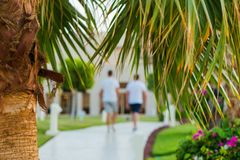 People walking at sunset tropical park. Area at summer vacations stock photography