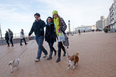 People walking their dogs, Ostend, Belgium. People walking their two dogs in Ostend, Belgium Stock Photography