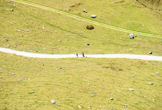 People on walking track from high point of view Royalty Free Stock Photography