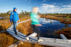 People walking on trail in swamp Stock Photos