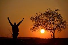 People walking beside tree at sunset Royalty Free Stock Photo