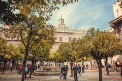 People walking under orange trees of garden courtyard of the 16th century Sevilla Cathedral stock photos