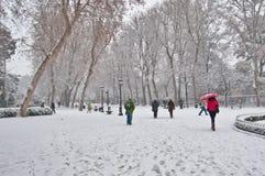 People walking under a winter heavy snow. Madrid, Spain, unusual heavy snow in the Retiro park stock images