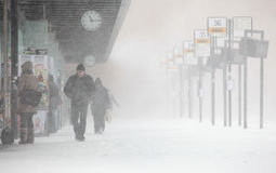 People walks under unexpected heavy snow Stock Images