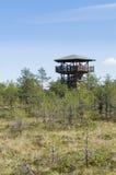 People on watch tower of Viru bog Royalty Free Stock Photo