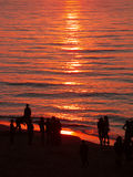 People watching sunset. People on he beach watching sunset Royalty Free Stock Photo