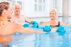 People at water gymnastics in physiotherapy. People young and senior in water gymnastics physiotherapy with dumbbells Stock Photo