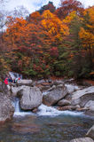 People and waterfall in autumnal forest Royalty Free Stock Photo