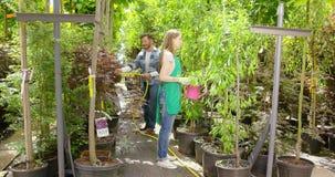 People watering flowers in garden stock video footage