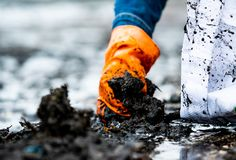 People wear orange gloves picking garbage up in to white bag. Closeup hand of adult volunteers collecting black garbage on the sea royalty free stock photo