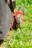 People were cutting grass. Stock Images