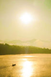 Gold Landscape Stock Photography