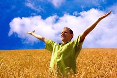 People in wheat field Stock Images