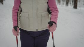 People who engaged in Nordic walking in the winter forest closeup. Modern types of leisure activities for all. Healthy. Lifestyle. Ski poles in hands stock footage