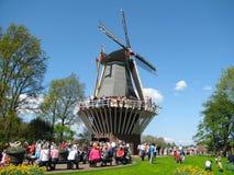 People wind mill Keukenhof Stock Images
