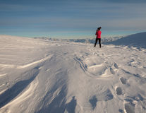 People on winter vacation, skiing and snowboarding Stock Photography