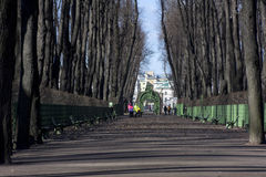 people, women with prams walking in the Park, trees, Royalty Free Stock Photo