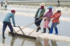 People work at the salt farm in Huahin, Thailand. Royalty Free Stock Photography
