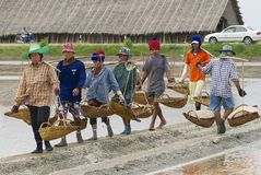 People work at the salt farm in Huahin, Thailand. Stock Photo