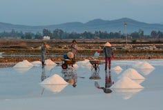 People work on salt fields in Hon Khoi, Khanh Hoa, Vietnam Stock Photography