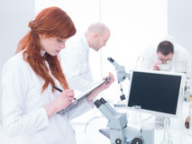 People working in chemistry lab Stock Photo