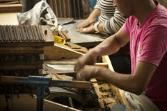 People working in a cigar factory Stock Image