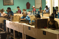 People working in a cigar factory Royalty Free Stock Image