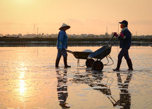People working on the field in Binh thuan, Vietnam Stock Image
