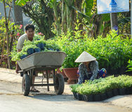 People working at the garden Royalty Free Stock Images