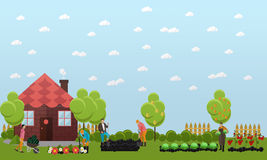 People working in garden near cottage, vector illustration. Stock Photography