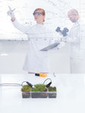 People working in laboratory Stock Photos