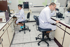 People working in the laboratory Stock Image