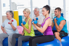 People working out with dumbbells in gym class. Confident people on exercise balls while working out with dumbbells in gym class Royalty Free Stock Photo