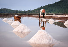 People working on salt field in Cambodia Stock Photos