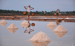 People working on salt field in Cambodia Stock Image