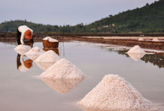 People working on salt field in Cambodia Stock Photo