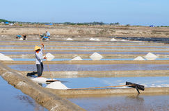 People working on the salt field in Hon Khoi, Vietnam Royalty Free Stock Photo