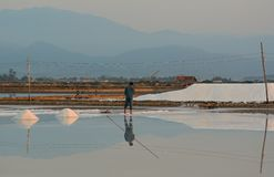 People working on salt field at summer royalty free stock photo