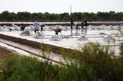 People working in salt pan Stock Photo