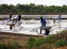People working in salt pan Royalty Free Stock Photography