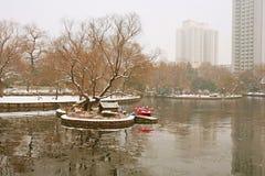 People& x27 Zhengzhou; парк s стоковые изображения rf