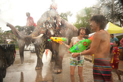 Peoples enjoy splashing water Songkran festival in Thailand. AYUTTAYA, THAILAND - APRIL 15: Thai peoples and elephants enjoy splashing water together in royalty free stock image