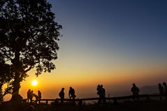 Peoples and trees silhouetted with sunset Stock Images
