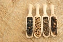 pepe, coriandolo, chiodi di garofano e seme di cumino dei prati Fotografia Stock