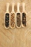 pepe, coriandolo, chiodi di garofano e seme di cumino dei prati Fotografia Stock Libera da Diritti