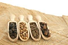 pepe, coriandolo, chiodi di garofano e seme di cumino dei prati Fotografie Stock
