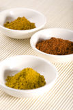 Pepe di Caienna, curry e curcuma in ciotole bianche Fotografia Stock Libera da Diritti